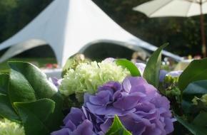 Mooi Lentefeest nabij Machelen